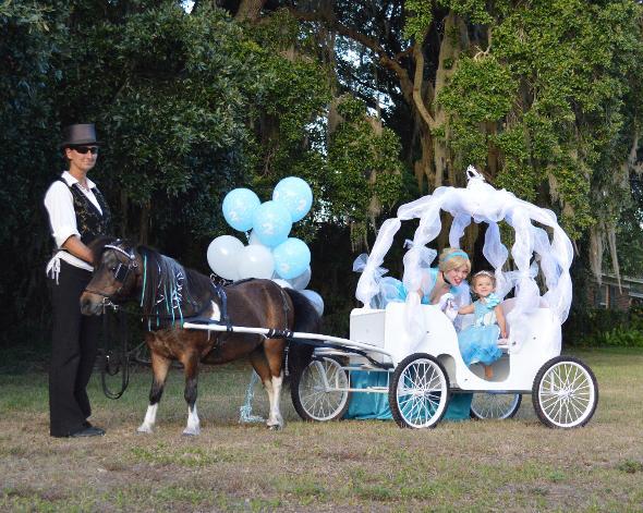 Pony Rides & Parties