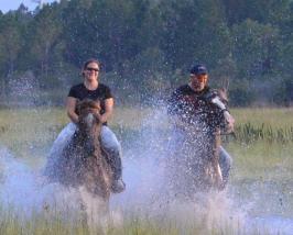ZYLBDNB Genouill/ères Mototourisme Anti-Chute Rider Hors Route /Équipement Coupe-Vent Leggings Hommes et Les Femmes Four Seasons /Équipement de Protection